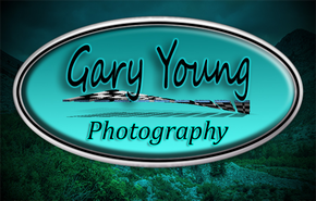 Gary Young Photography